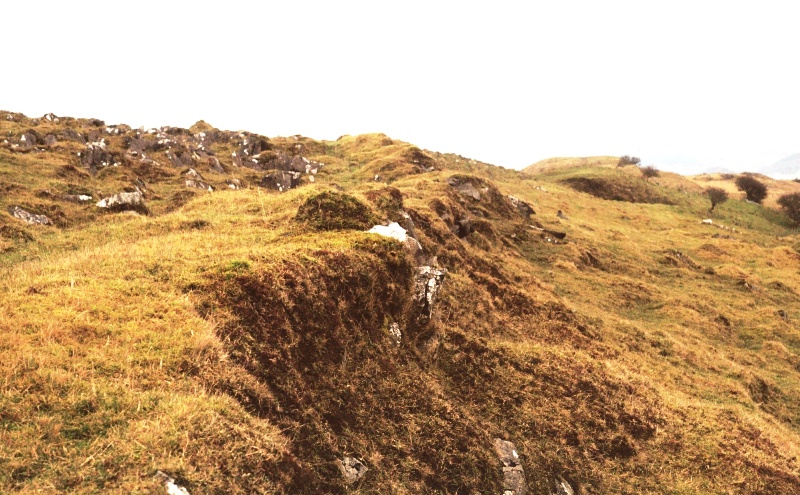 Turf & stone dyke Baligrundle 2