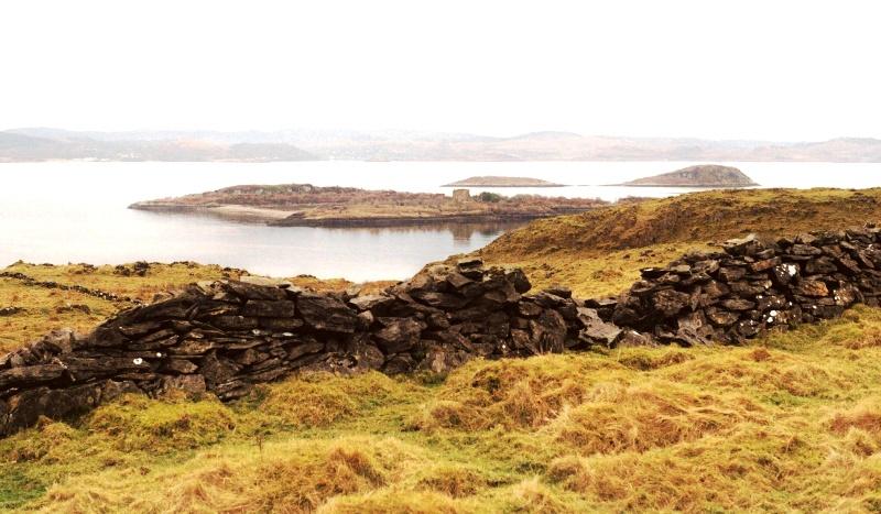 Photo 7  The Kilcheran Islands, where horses summered.JPG small
